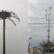 Cleveland Utilities installs LEC Lightning Protection Systems